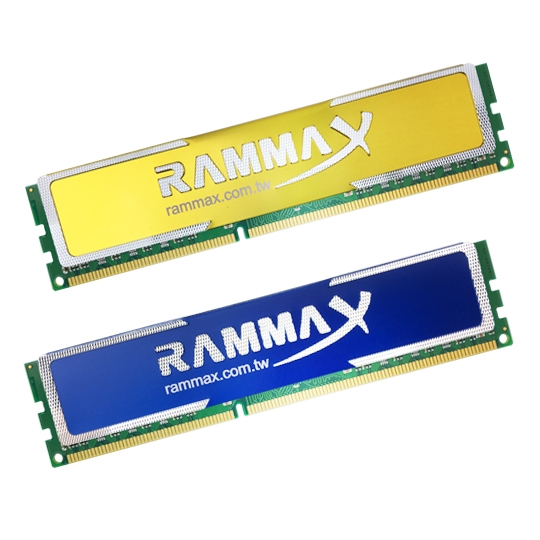 Memory RAM with Heat Sink